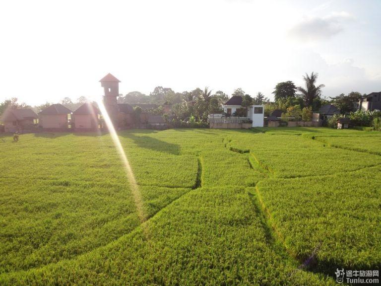 巴厘岛蜜月旅游_途牛旅游网带您去巴厘岛蜜月旅游