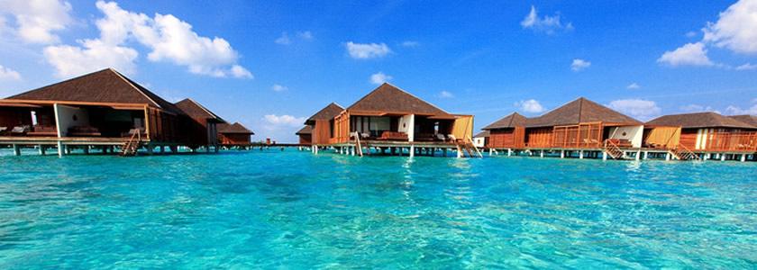 天堂岛paradise island